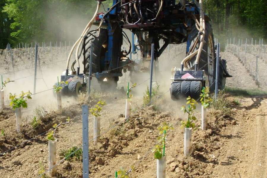 Machine maintenance Inter rank for vine growing